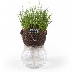 Tête à pousser avec graines de gazon - MR GREEN